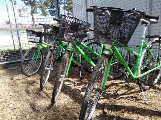vélo cobas